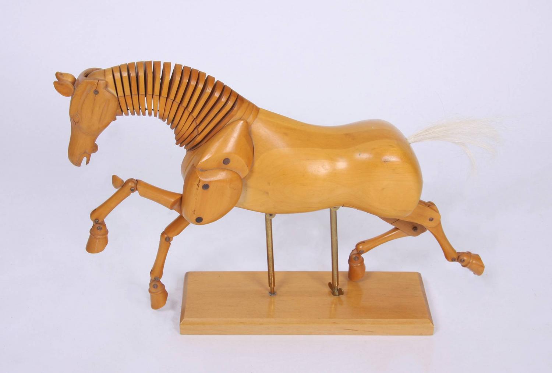 Horse Artist`s Model