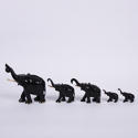 Collection of Elephants - picture 4