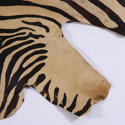 Zebra Print Rug - picture 3