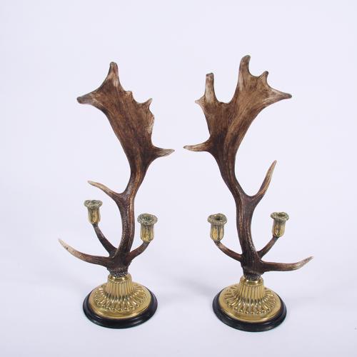Antler Candlestick Holders