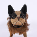 French Bulldog Pull Toy - picture 2